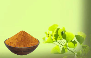 Low Ginkgolic Acid Ginkgo Leaf Extract For Cosmetics